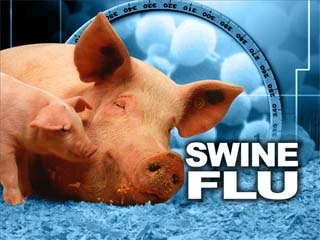 swine20flu20copy