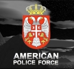 american police force